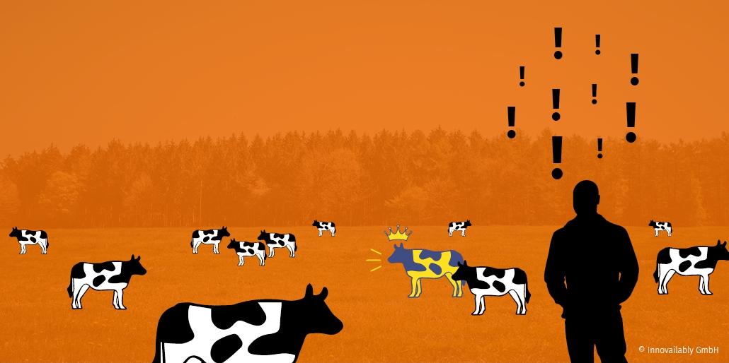 Die beste Kuh auf der Weide
